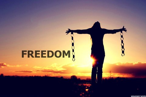 Freedom-Series-Logo